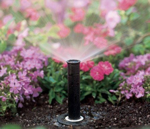 Avtomatizirano zalivanje vrta