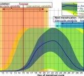 Kdaj nastopi ovulacija?