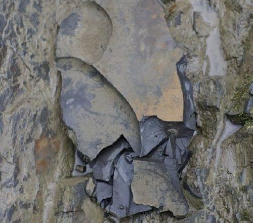 Katere vrste kamna poznamo?