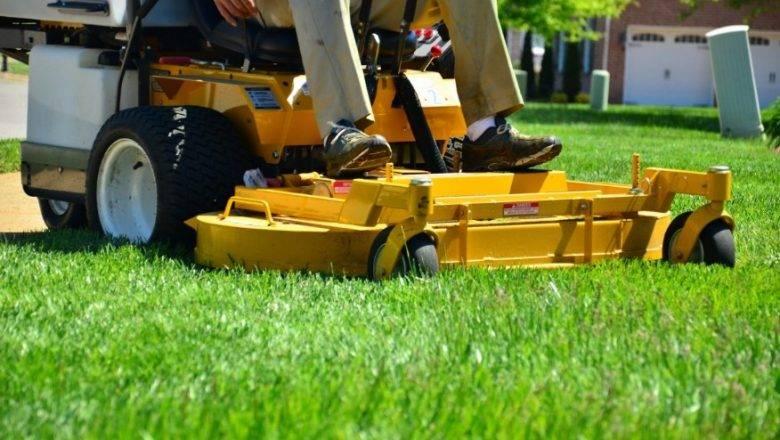 Pomen redne košnje trave